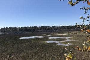 Deepwater Deloss Point Vacant Waterfront Lot in Jasper, SC (4 of 31)