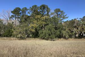 Deepwater Deloss Point Vacant Waterfront Lot in Jasper, SC (18 of 31)