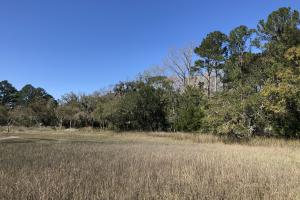 Deepwater Deloss Point Vacant Waterfront Lot in Jasper, SC (19 of 31)