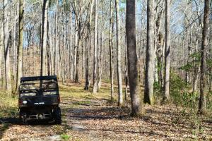 Coldwater Preserve in Talladega, AL (16 of 42)