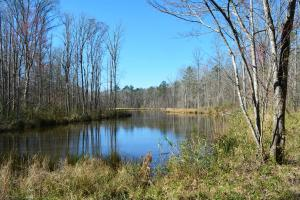 Coldwater Preserve in Talladega, AL (19 of 42)