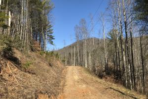 Colletsville Forest Creek Lot 65 - Caldwell County NC