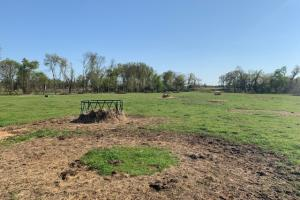 Perfect tract for a Cattelman with 230 acres  (43 of 48)
