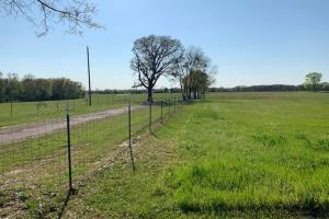 The 230 acres ranch is well fenced and ready to run cattle in Van Zandt County. (40 of 48)