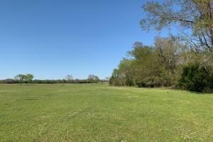 230 acres of seclusion at Purtis Creek Ranch (30 of 48)
