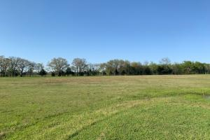 Well manicured coastal meadows in Van Zandt County (5 of 48)