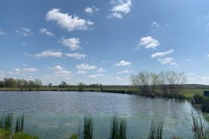Views you have to see to believe on 230 acres in Van Zandt County (22 of 48)