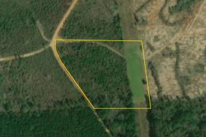 Bridlepath Road Jackson Lot B - Clarke County AL