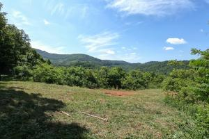 Large Rolling Tract with Views - Henderson County, NC