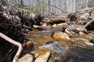 Bold Creek, Unrestricted Woodland Acreage near Edneyville (5 of 18)