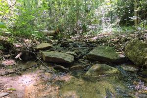Creek Flows Year Round, Unrestricted Woodland Acreage near Edneyville (6 of 18)