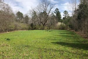 Pines and Farmland Investment Property - Calhoun County MS