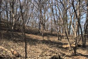 Fremont County's Loess Hill Gem in Fremont, IA (21 of 44)