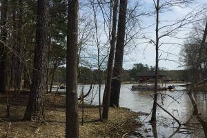 Lake Wateree Development Tract with Two Docks in Kershaw, SC (22 of 38)