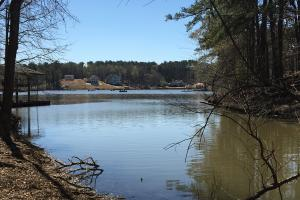 Lake Wateree Development Tract with Two Docks in Kershaw, SC (5 of 38)