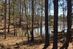 Lake Wateree Development Tract with Two Docks in Kershaw, SC (21 of 38)