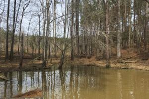Lake Wateree Development Tract with Two Docks in Kershaw, SC (9 of 38)