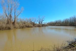 The Cut-Off Farm and Wildlife Tract - Perry County AR