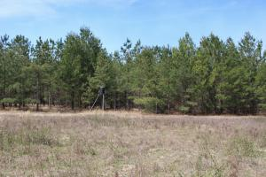 Brier Creek Hunting Tract in Jefferson, GA (54 of 82)