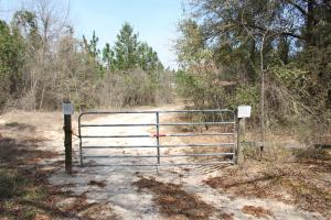 Brier Creek Hunting Tract in Jefferson, GA (79 of 82)