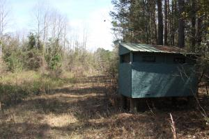 Brier Creek Hunting Tract in Jefferson, GA (33 of 82)