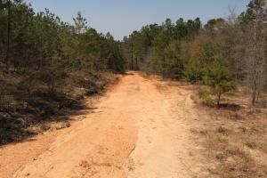 Brier Creek Hunting Tract in Jefferson, GA (47 of 82)