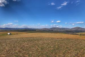 Burke County Farmland - Burke County NC