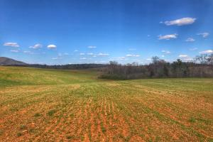 Connelly Springs Farmland in Burke, NC (3 of 25)