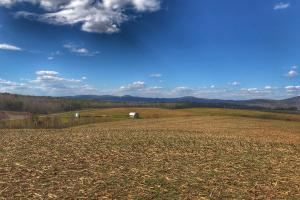 Connelly Springs Farmland in Burke, NC (6 of 25)