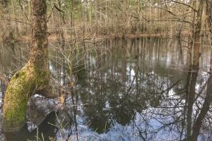 South River Hunting Retreat & Duck Impoundment in Sampson, NC (26 of 48)