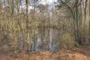 South River Hunting Retreat & Duck Impoundment in Sampson, NC (42 of 48)