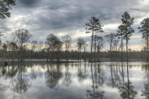 South River Hunting Retreat & Duck Impoundment in Sampson, NC (7 of 48)