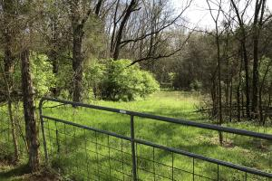 Rocky Valley Road Acreage in Jefferson, TN (3 of 3)