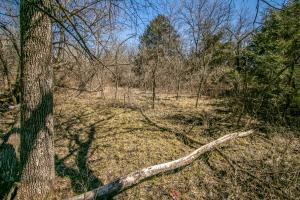 Yates Center Income Producing & Hunting Land in Woodson, KS (61 of 65)