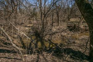 Yates Center Income Producing & Hunting Land in Woodson, KS (45 of 65)