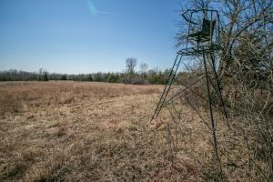 Yates Center Income Producing & Hunting Land in Woodson, KS (26 of 65)