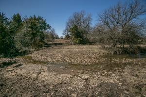 Yates Center Income Producing & Hunting Land in Woodson, KS (43 of 65)