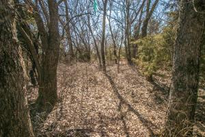 Yates Center Income Producing & Hunting Land in Woodson, KS (49 of 65)