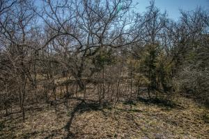 Yates Center Income Producing & Hunting Land in Woodson, KS (53 of 65)