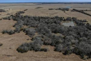 Yates Center Income Producing & Hunting Land in Woodson, KS (16 of 65)