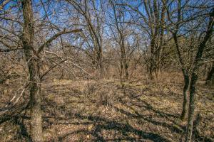 Yates Center Income Producing & Hunting Land in Woodson, KS (59 of 65)