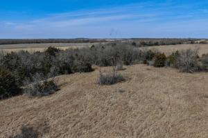 Yates Center Income Producing & Hunting Land in Woodson, KS (24 of 65)