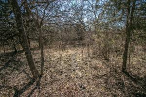 Yates Center Income Producing & Hunting Land in Woodson, KS (51 of 65)