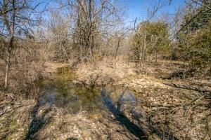 Yates Center Income Producing & Hunting Land in Woodson, KS (25 of 65)