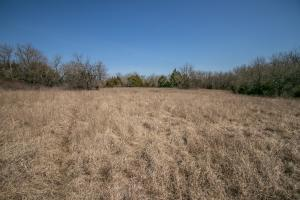 Yates Center Income Producing & Hunting Land in Woodson, KS (17 of 65)