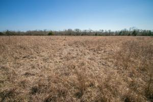 Yates Center Income Producing & Hunting Land in Woodson, KS (55 of 65)