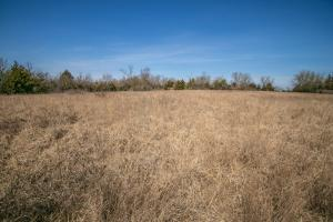 Yates Center Income Producing & Hunting Land in Woodson, KS (35 of 65)