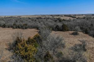 Yates Center Income Producing & Hunting Land in Woodson, KS (4 of 65)
