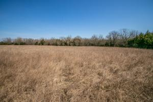 Yates Center Income Producing & Hunting Land in Woodson, KS (57 of 65)