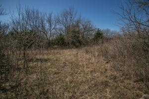 Yates Center Income Producing & Hunting Land in Woodson, KS (58 of 65)